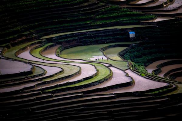 Mg 2507 Photography Art | Kah-Wai Lin Photography LLC