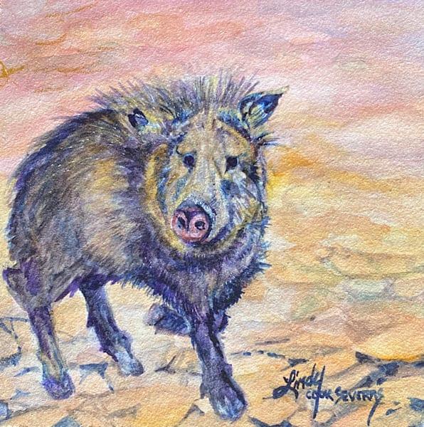 Lindy Cook Severns Art | Javelina Howdy, original watercolor