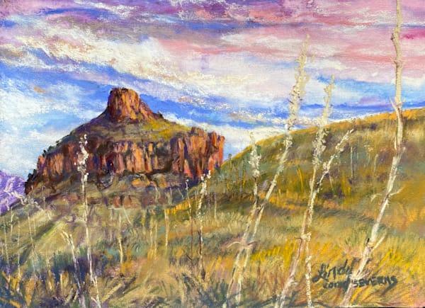 Lindy Cook Severns Art | Carousel and Sotol, original pastel