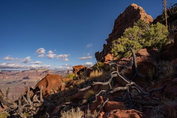Petroglyphs along the rock walls of the Grand Canyon