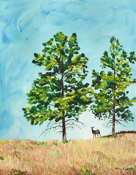 1. Okanagan Study #55   40% Off Art   Kelly Corbett Artist