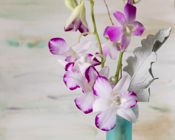 Orchids with hand painted layer by Amy Hart