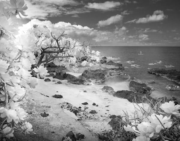 Hawaiian Paradise, Maui Photography Art | The World in Black and White