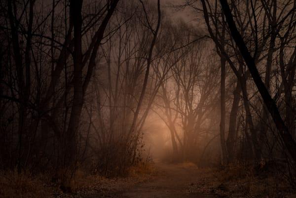 Toward The Light Photography Art | matt lancaster art