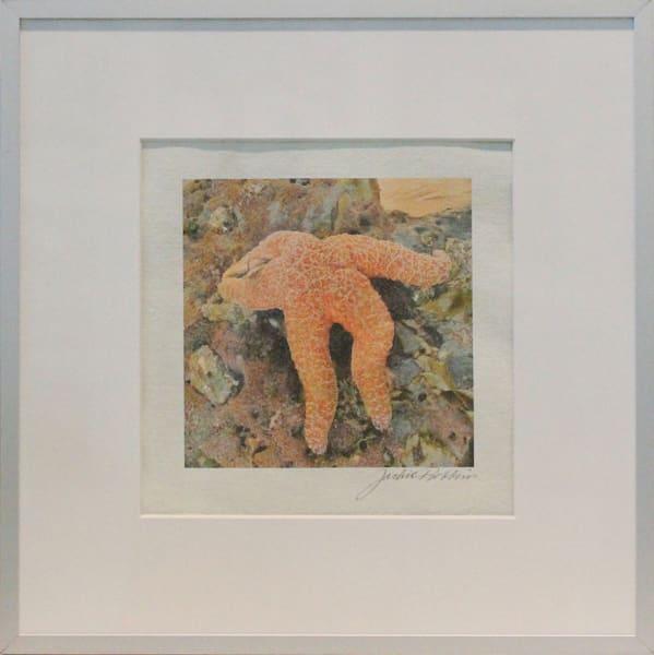 starfish, tidepool, orange, ocean, jackierobbbinsstudio, photographicprints, handmadericepaper