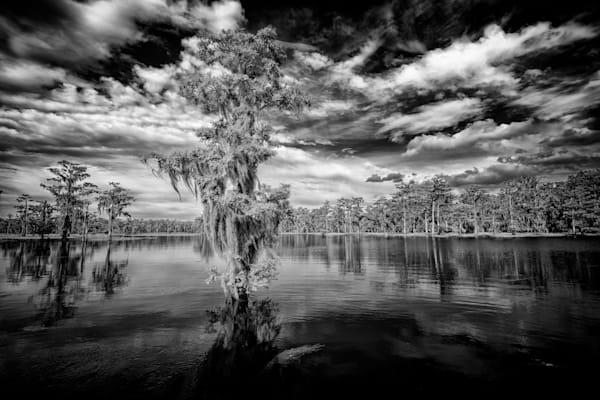 Atchafalaya Black & White | Shop Photography by Rick Berk