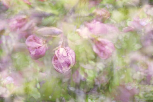 Spring Garden Art | KJ's Studio