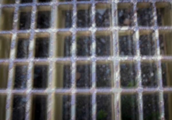 Grid Black With Yellow Photography Art | TERESA BERG PHOTOGRAPHY