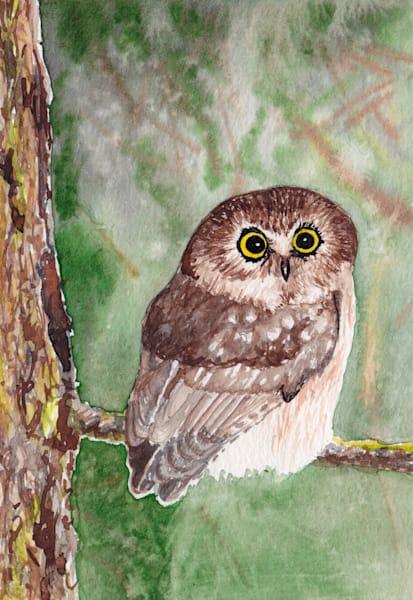 Saw Whet Owl Art | East End Arts
