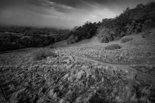 Sonoma Regional Park path