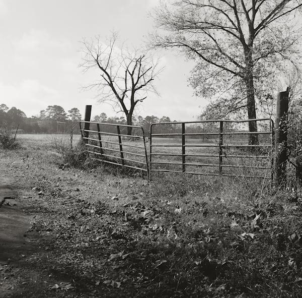 Texas Pasture Photography Art   TERESA BERG PHOTOGRAPHY