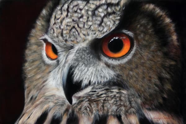 Checkers the Eurasian Eagle Owl by Nancy Conant