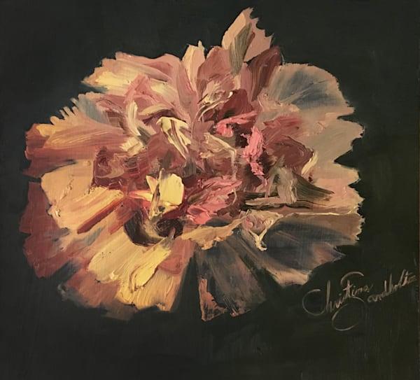 Carnation Art   Christina Sandholtz Art