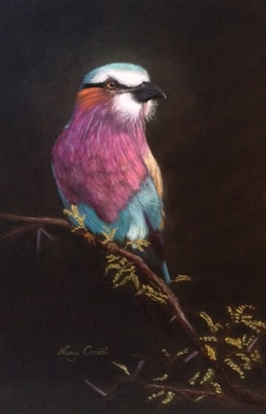 Lilac Breasted Roller by Nancy Conant
