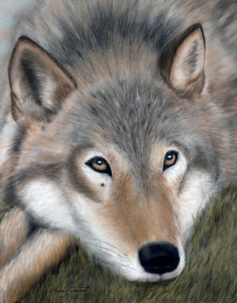 wolf portrait, El Lobo by Nancy Conant