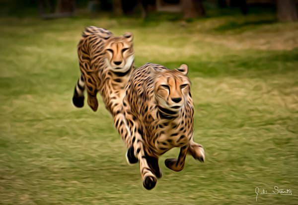 The Cheetah Brothers!   Painted Photography Art   Julian Starks Photography LLC.
