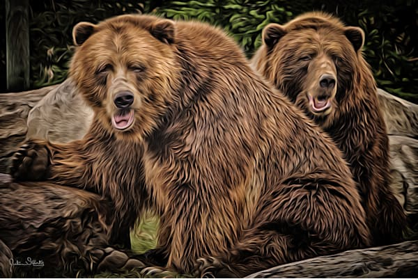 The Brown Bear Brothers!   Painted Photography Art   Julian Starks Photography LLC.