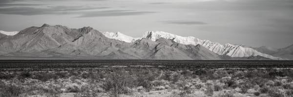 Contrasts   Panorama Art | davinart
