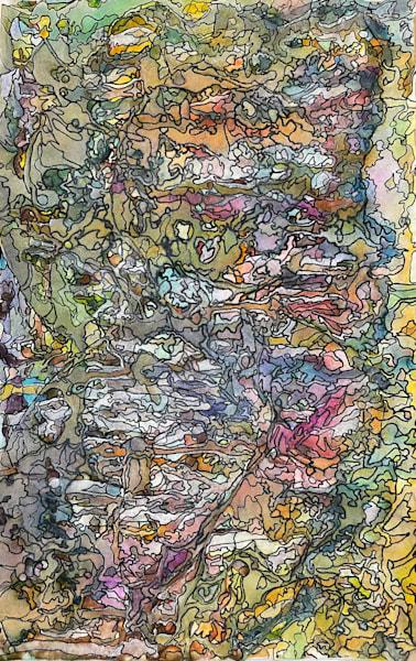 Wild, 2011 Art | Artist Rachel Goldsmith, LLC