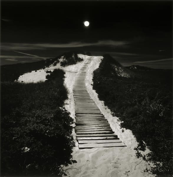 Moonlit Path To The Beach Art | Full Fathom Five Gallery