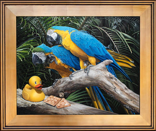 """""""Polly Wanna Quacker"""" painting with macaws by Kevin Grass"""