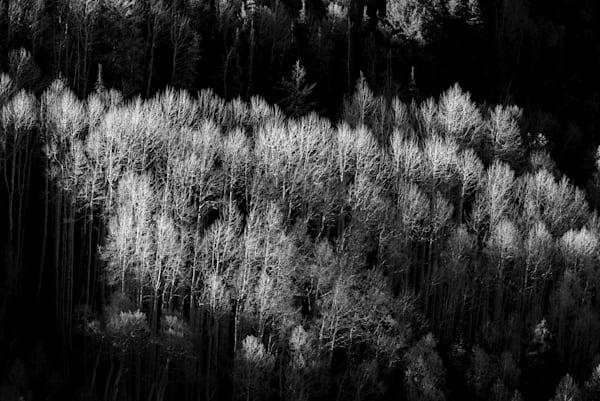 Light Over The Shoulder Photography Art | matt lancaster art