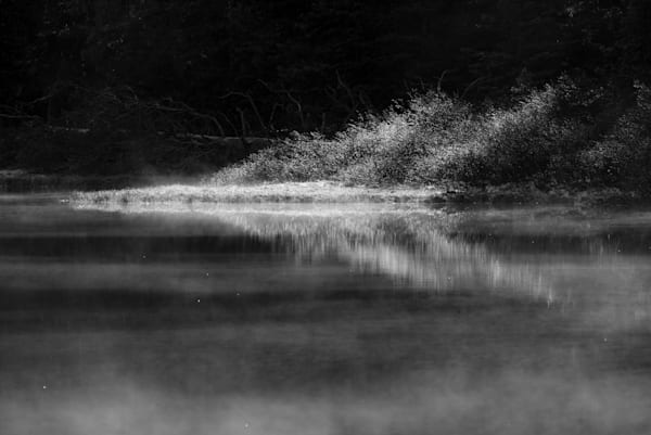 Sunlit Bank Photography Art | matt lancaster art