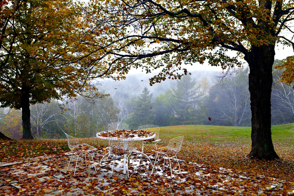 John E. Kelly Fine Art Photography – Table with Leaves - Urbanism