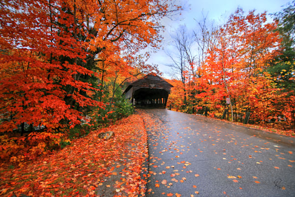 Albany Covered Bridge: Shop prints | Lion's Gate Photography