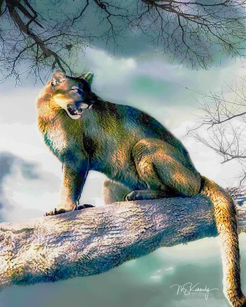 Panther In A Tree Art | Cutlass Bay Productions, LLC