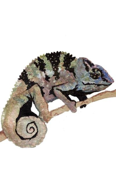 Chameleon Art | Christina Sandholtz Art