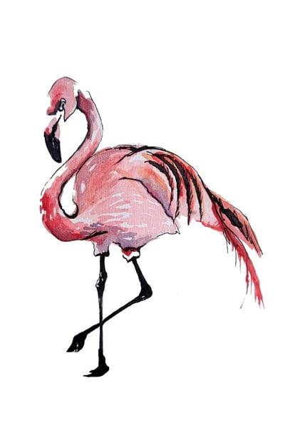 Flamingo Art | Christina Sandholtz Art