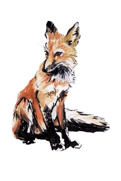 Fox Art | Christina Sandholtz Art
