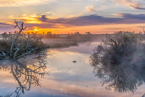 Trapps Pond Morning Mist Art | Michael Blanchard Inspirational Photography - Crossroads Gallery