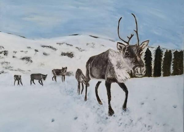 Caribou Country Art | Salvatore Ingoglia / Jbellarts