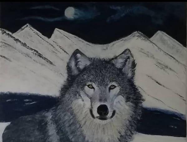 Mid Night Wolf Art | Salvatore Ingoglia / Jbellarts