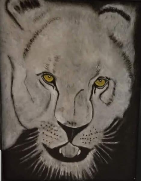Lioness Art | Salvatore Ingoglia / Jbellarts