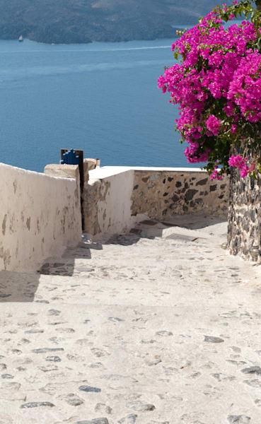 Pathway To Paradise Photography Art | Visual Arts & Media Group Corporation