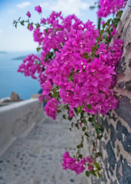 Greek Isle Goals  Photography Art | Visual Arts & Media Group Corporation