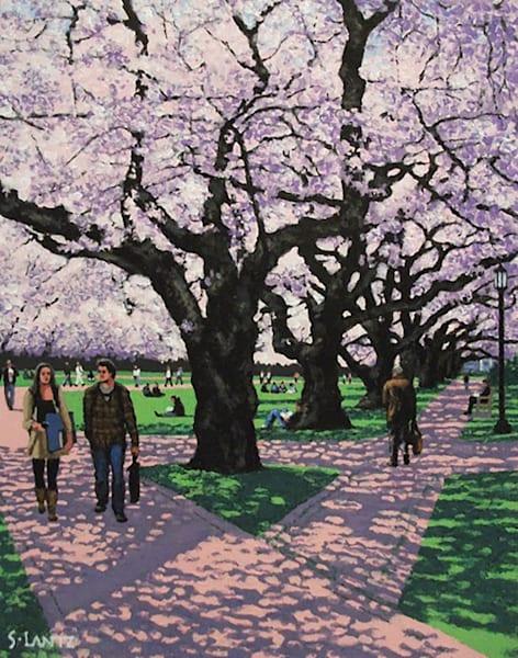 Cherry Trees Uw Quad Art | Fountainhead Gallery