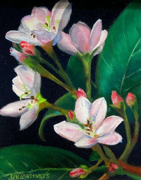 White Oleanders Art   Jennifer Zardavets Art