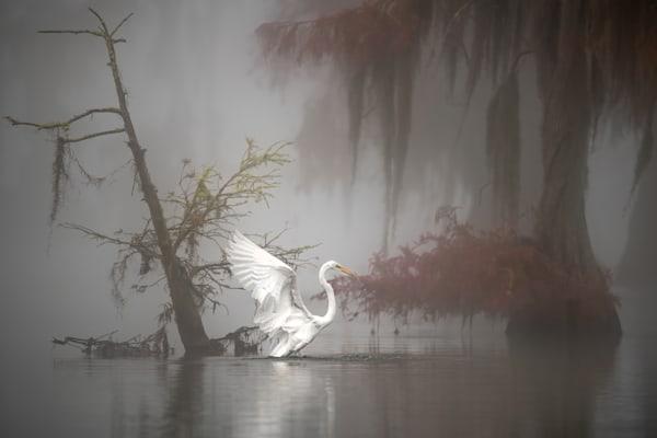 Fairy Tale Photography Art | Garsha18 Fine Art Photography