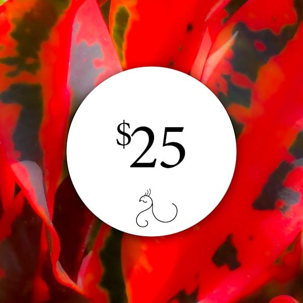 $25 Gift Card | Bird In Paradise