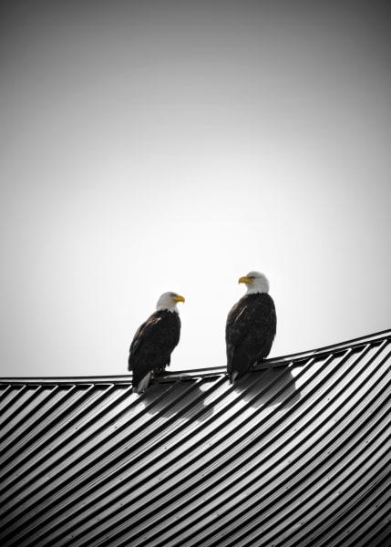 Cute Couple Art | James Alfred Friesen