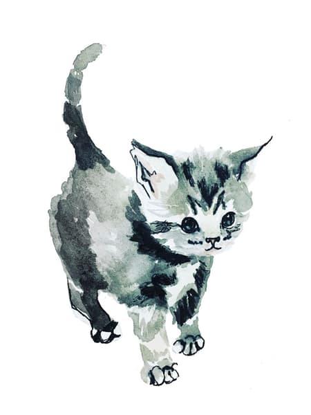 Gray Kitten Art | Christina Sandholtz Art
