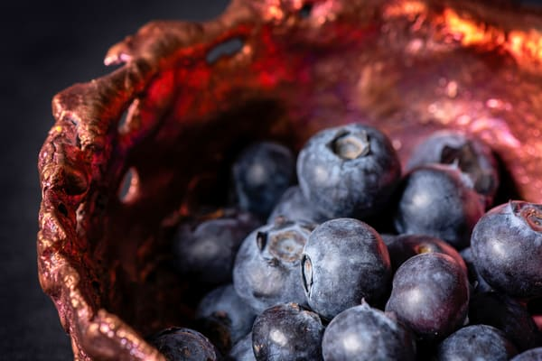 Blueberries In Copper Bowl Photography Art | Kendall Photography & Fine Art