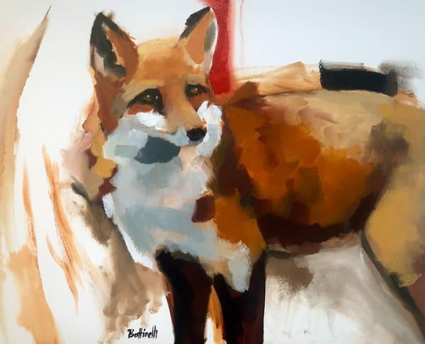 Evolution Of A Fox I   Custom Size Print Art   Bottinelli Fine Art