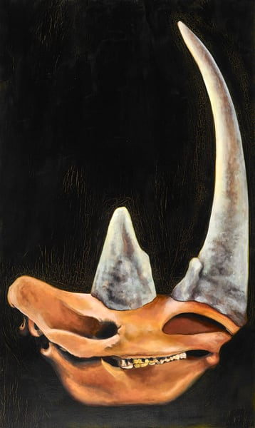 Rhino Skull   Custom Size Print Art   Bottinelli Fine Art