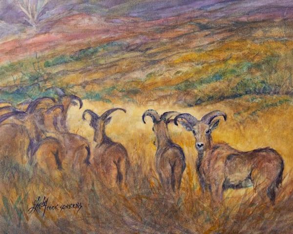 Lindy Cook Severns Art | Blending In, original watercolor