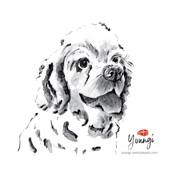 Coco Puff: Cocker Spaniel Art   Youngi-Sumistyle pets